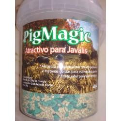 PigMagic